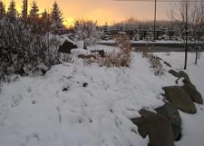 Snow_Calgary